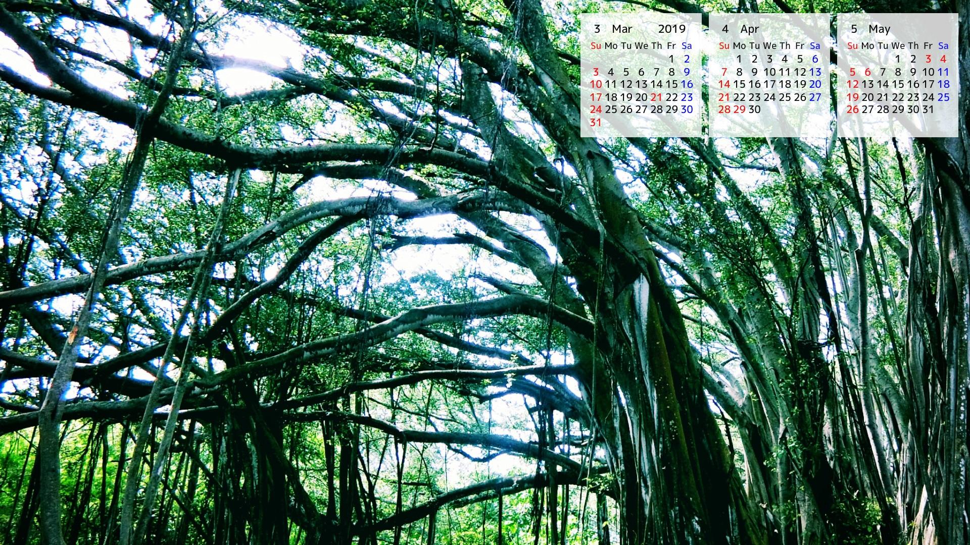 ハワイ壁紙カレンダー2019 ダウンロード ハワイ州観光局ニュース